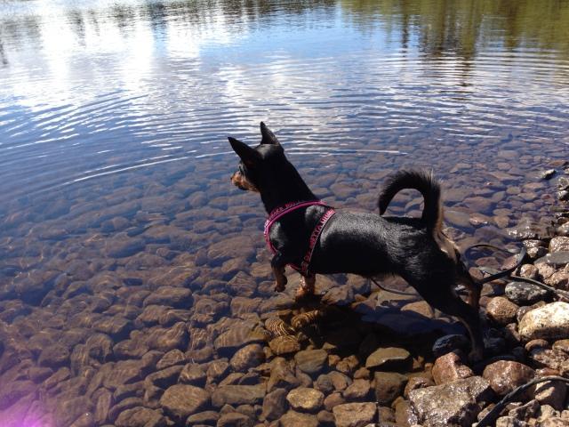 Doris spanar ut över vattnet